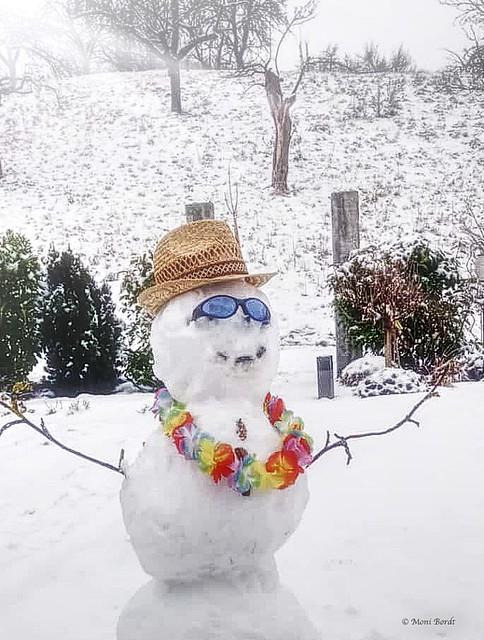 Internationaler Tag des Schneemanns / World Snowman Day