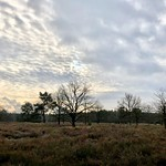 18. Jaanuar 2021 - 13:28 - wonderful light and clouds over the heathland