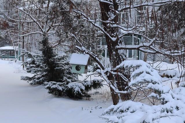 Фото-конкурс «Святогірськ у зимовій казці»