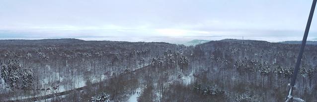 Aussicht vom Schönbuchturm