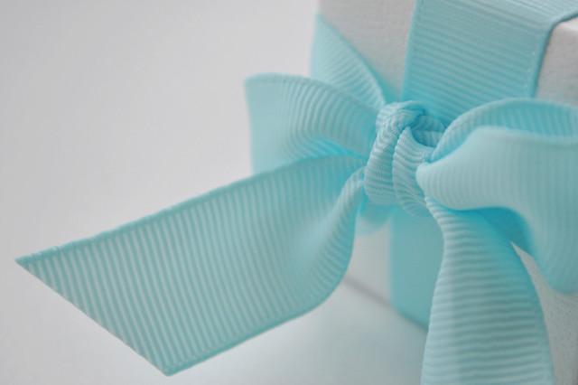 18/365 ~ blue ribbon (Explored)