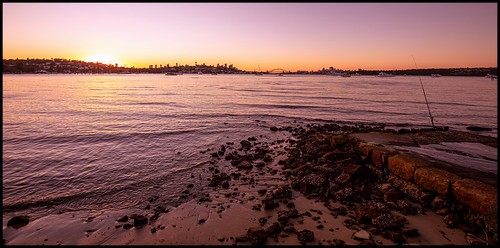 harbour sydney sydneyharbour sunset dusk dumaresqreserve