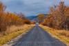 Road in Malheur Wildlife Refuge