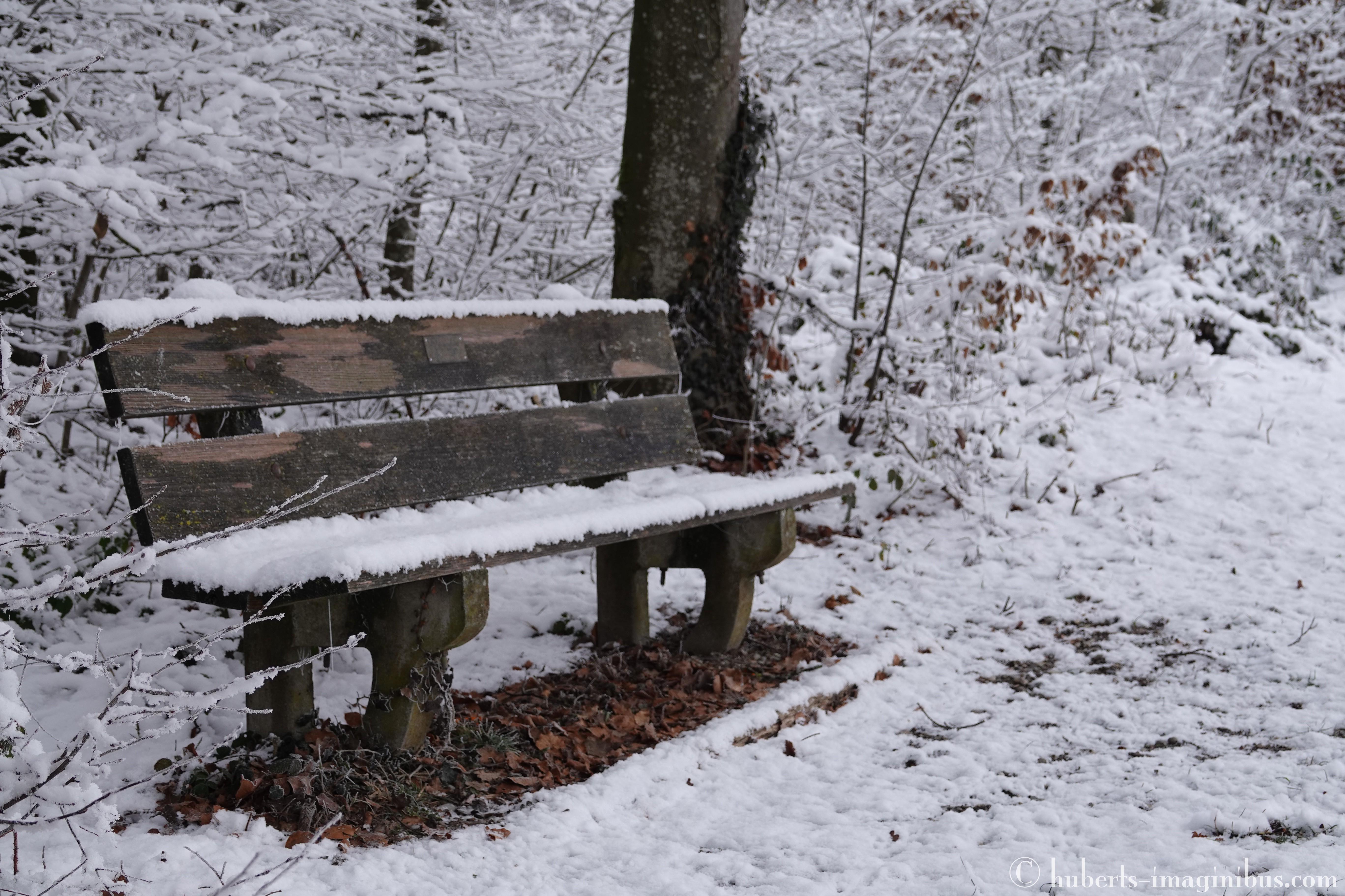 schnüffelkurs, 16.01.2020