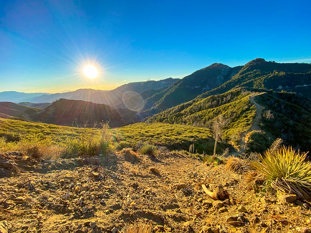 Sunrise in the Angeles National Forest