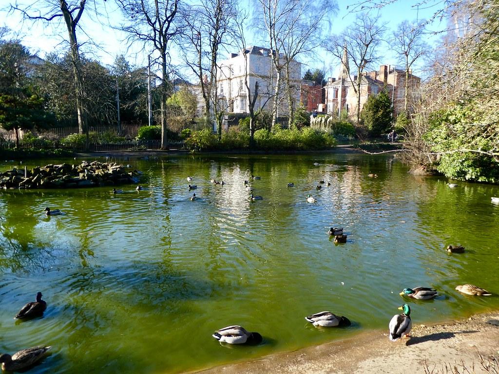 Nottingham Arboretum Lake