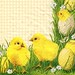 Easter, Chicken - 244_ct