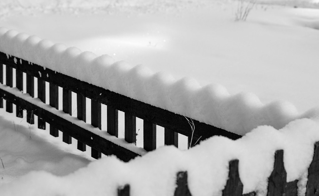 fence_snow_bw