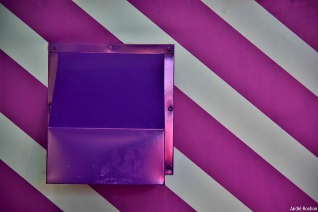 purple & mauve
