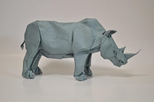 Rhinoceros 2021