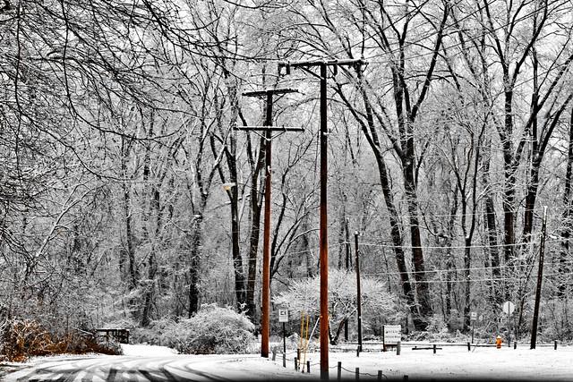 Wonders of Winter #17