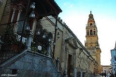 Calle Cardenal Herrero