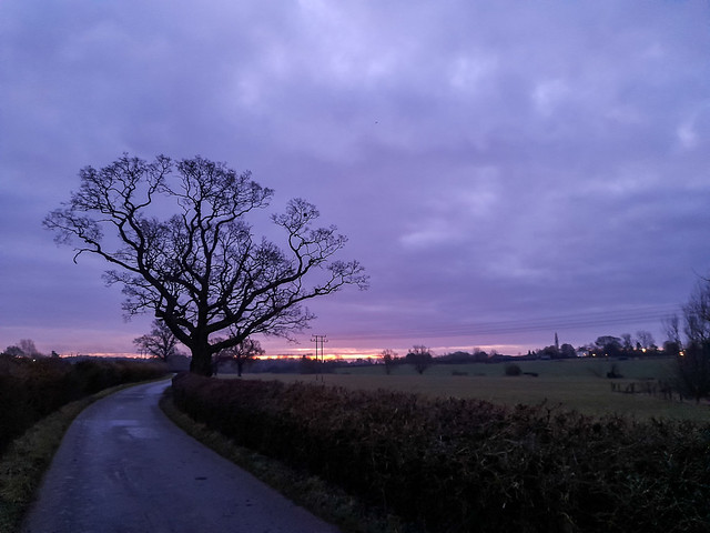 018/365v4 - Early Morning in Great Dunmow