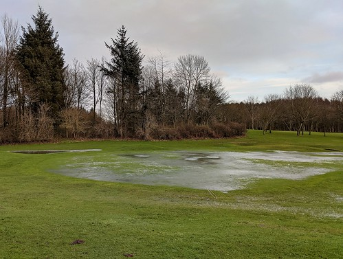 a frozen golf course