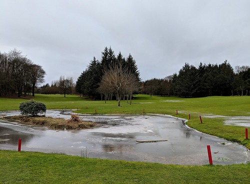 frozen golf course