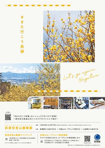 宝登山臘梅園 B1ポスター