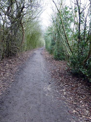 Bridleway2021Project