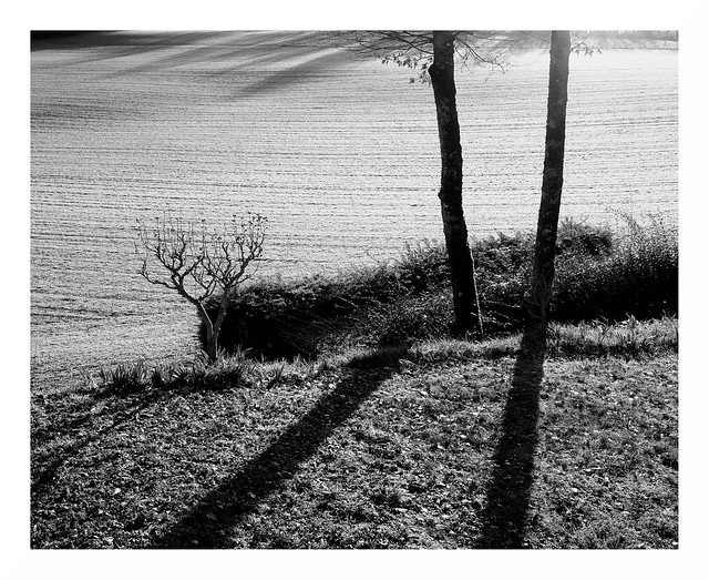 Winter in Quercy #12