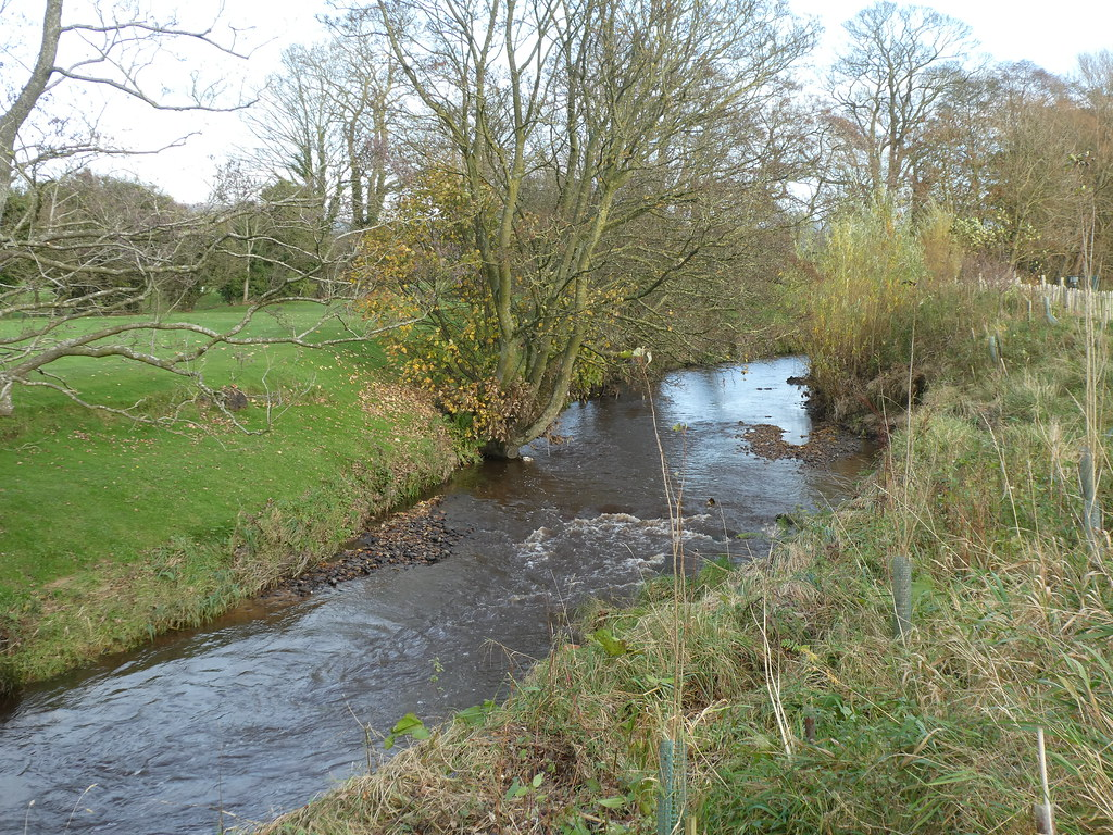 Catterall - River Calder 201110 5