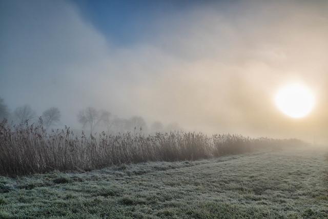 Réveil dans la brume
