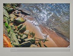 Frames2005(21)_083FL