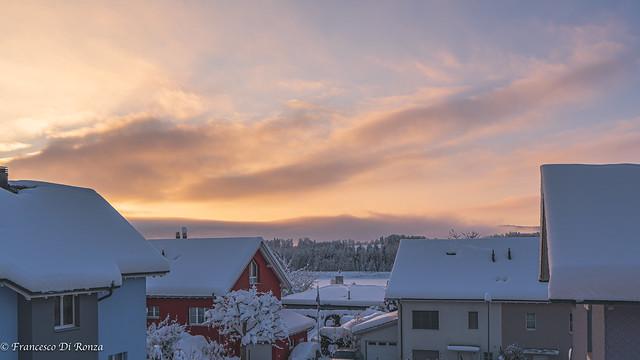 winter landscape .)2101/6795-13