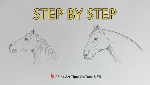 HOW TO DRAW A HORSE HEAD STEP BY STEP - Very easy | by fineart-tips