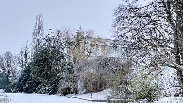 glasshouse in the frost