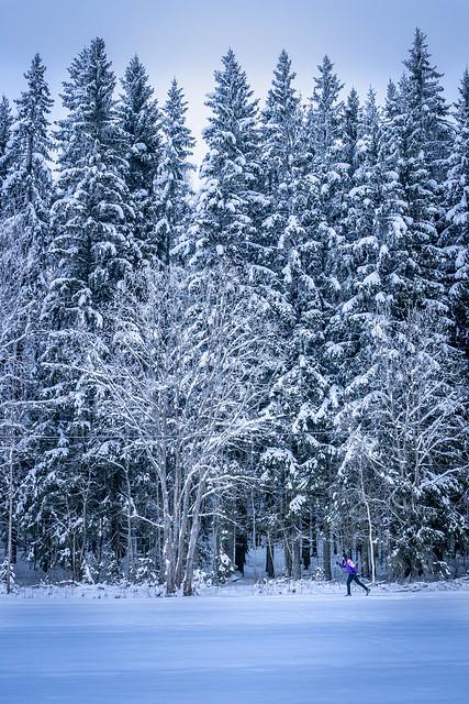 Ski with Wonderful Nature