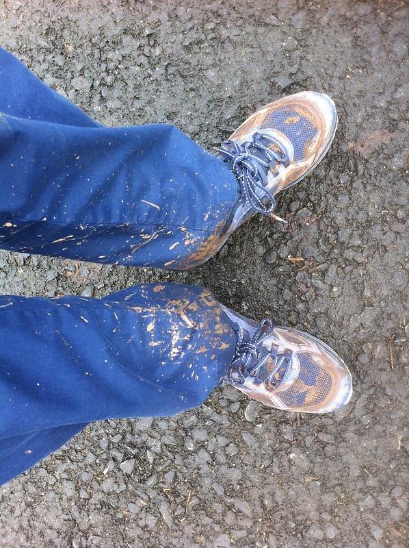 A bit muddy....