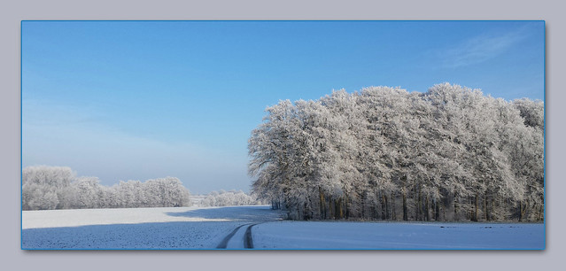 - winter scenery in the morning -