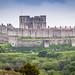 "<p><a href=""https://www.flickr.com/people/191818193@N07/"">john95th</a> posted a photo:</p>  <p><a href=""https://www.flickr.com/photos/191818193@N07/50852728261/"" title=""Dover Castle""><img src=""https://live.staticflickr.com/65535/50852728261_9526fee4e7_m.jpg"" width=""240"" height=""160"" alt=""Dover Castle"" /></a></p>  <p>Dover Castle</p>"