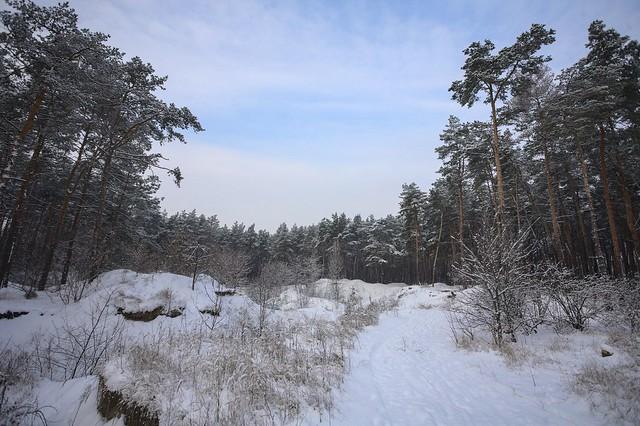 winter has come (again)