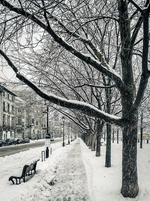 Snowy Sidewalk in Old Montreal