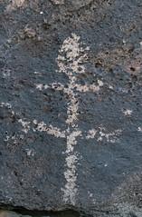 2020 11 Samaniego Hills Petroglyphs 06