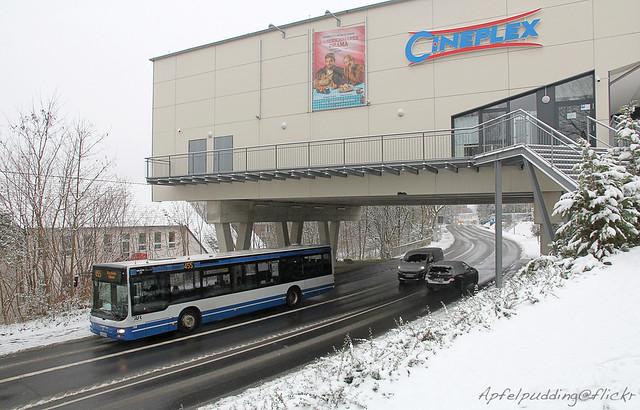 Bunte Buswelt - Bergisch Gladbach