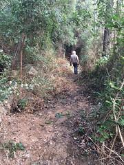 Travaux sur le PR3bis en RD du Cavu
