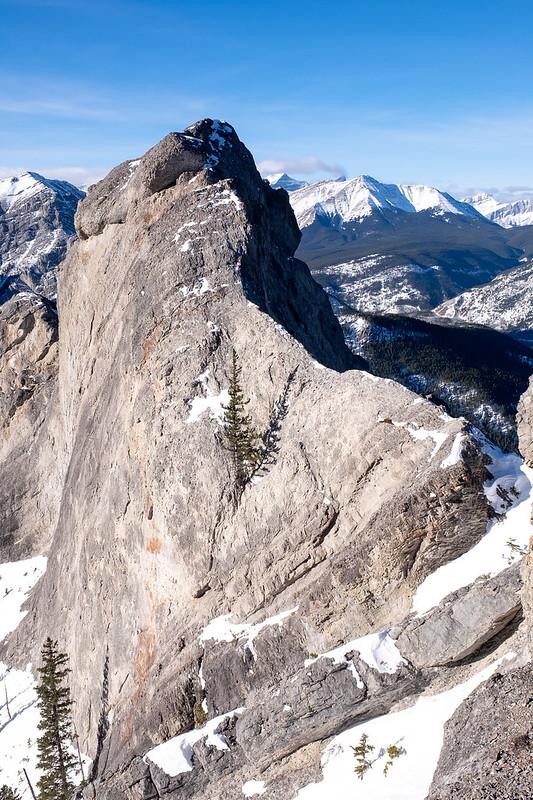 Scrambles - Porcupine Ridge - Jan 2021-10