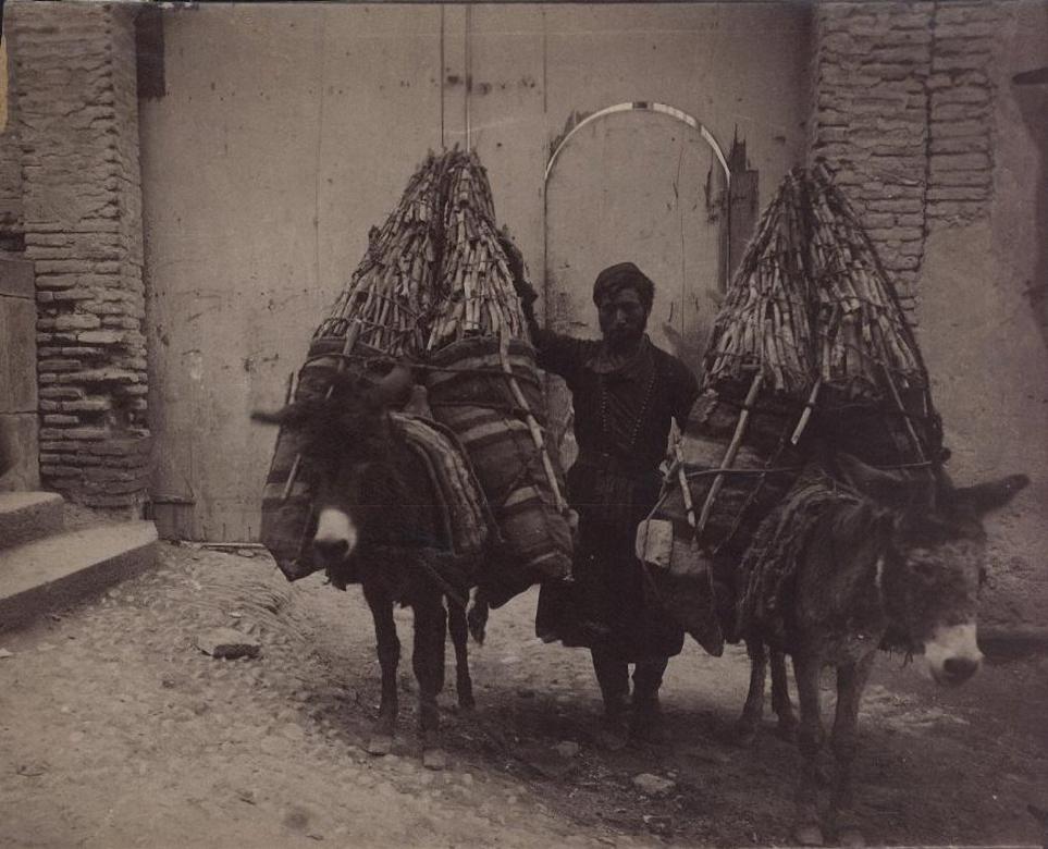Угольшик и навьюченные углем ослы