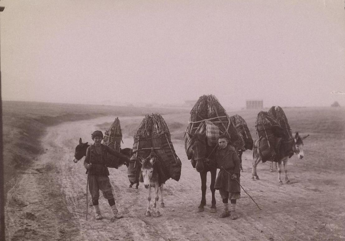 Два угольщика. Лошадь и ослы с мешками угля. Ермаков Д.И. 1880-1890-е