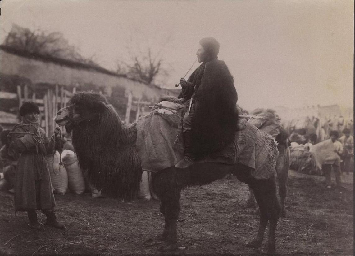 Верблюд с седоком и погонщик
