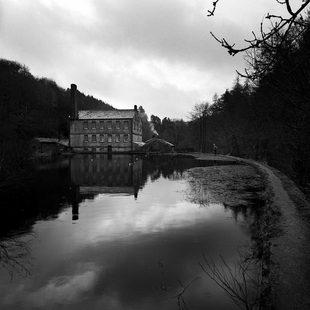 Reflections and raindrops in the mill pond.