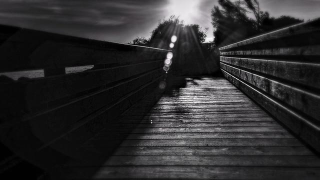Sun Spots on the Bridge