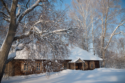 Тарханская снежная сказка. Фотосет от 17 января 2021 года. Фотограф Александр Семенов