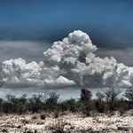 18. Detsember 2019 - 11:52 - Thunderstorm clouds are developing over the Etosha pan, Namibia