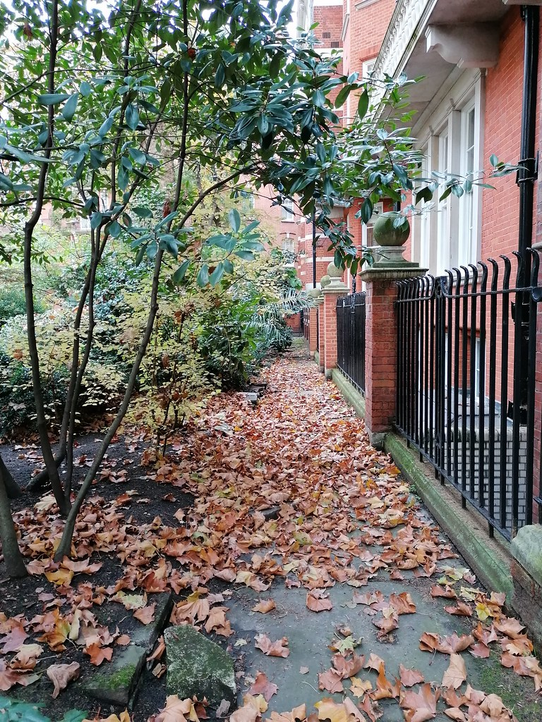 Mount Street Gardens Mayfair (November 2019) (The Polite Tourist)