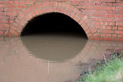 Westlands Drain water
