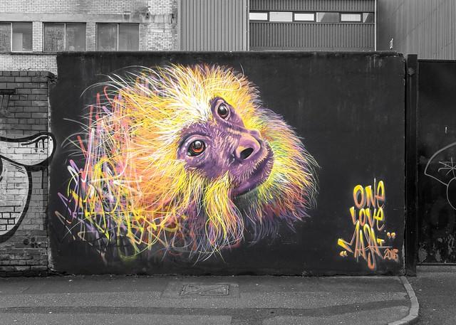 Belfast street art - 'Golden Spider Monkey'.