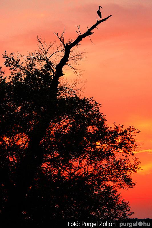 Nyári naplemente a Csordajáráson
