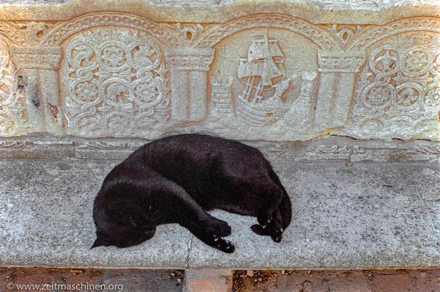 Schiff und Katze / Ship and Cat